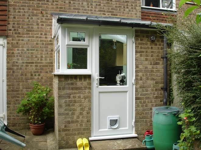 Back Door with cat flap fitted