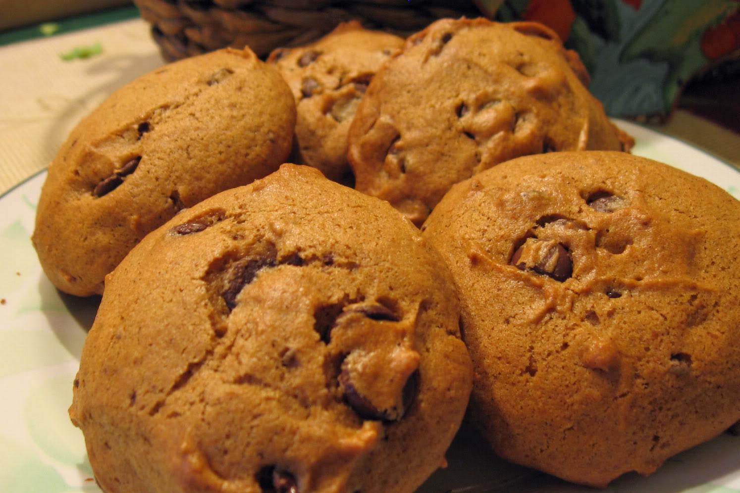 Spice Cake Pumpkin Chocolate Chip Muffins