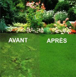 les conseils bricolage de misterbricolo jardin comment refaire sa pelouse en t. Black Bedroom Furniture Sets. Home Design Ideas