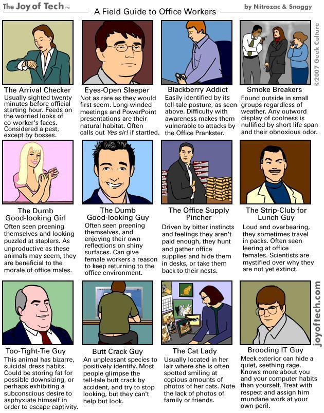 [office+worker+field+guide.JPG]