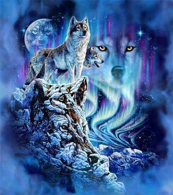Wolf pack WED463: October 2010