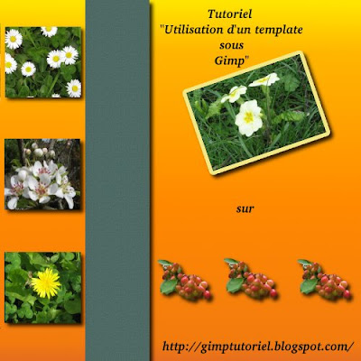 tutoriel digiscrap template