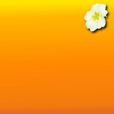 gimp scrap fleur ombre