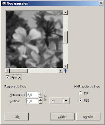 application flou gaussien sur calque noir et blanc