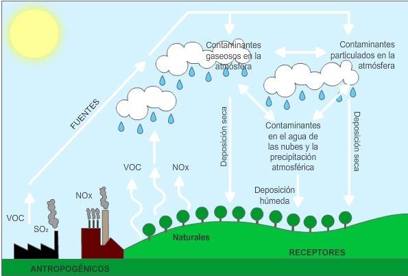 Ciclo de la lluvia acida Imagui