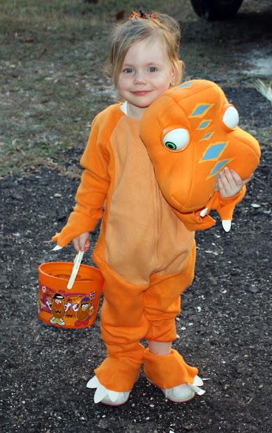 Top Notch Material Dinosaur Train Costume