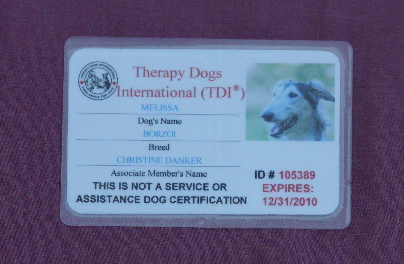 Hemlock Hollow Dog Training with Chris Danker CPDT-KA KPA