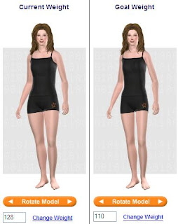 Weight Loss Success Stories: A Virtual Model for Weight Loss