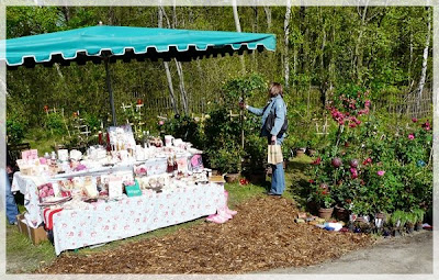 fuchsienrots garten blog pflanzenmarkt im hessenpark. Black Bedroom Furniture Sets. Home Design Ideas