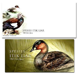 Wild Duck Presentation Pack
