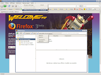 Firefox 3 beta 3 - Places 1