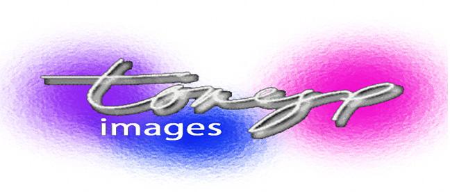 tonyp images