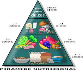 PIRAMIDE DE LA NUTRICION