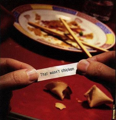Funny Picture Image - Fortune Cookie