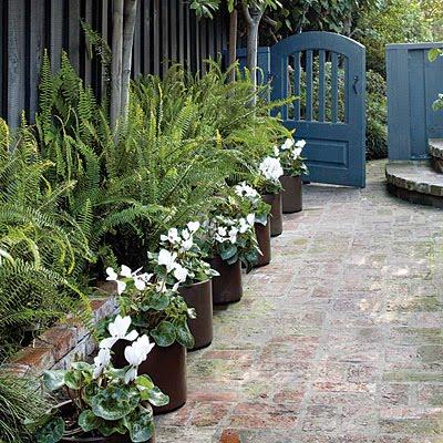 Making Macy: Dilemma in Landscaping: Narrow Side Yards on Narrow Side Yard Landscaping id=59145