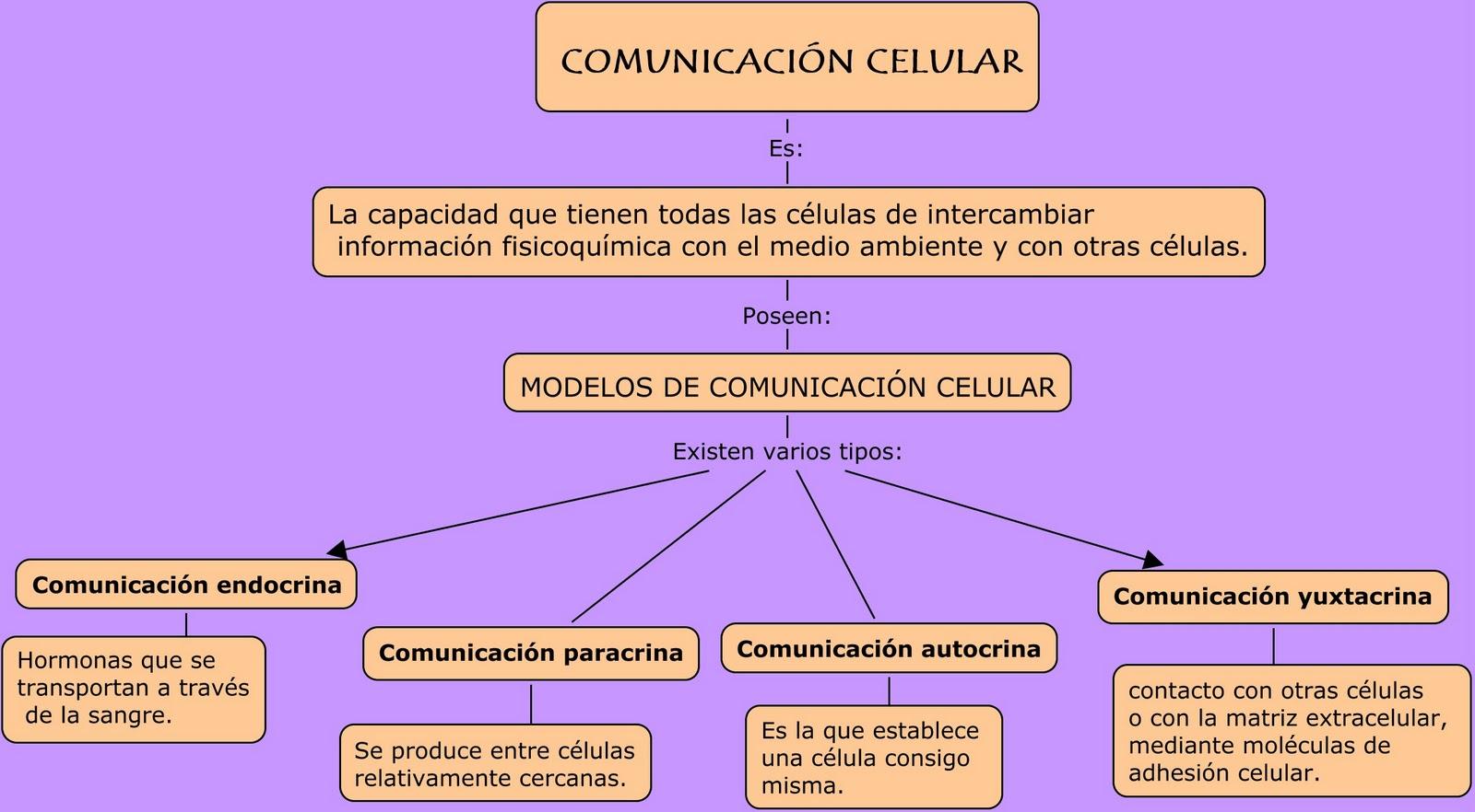 Alberts biologia celular