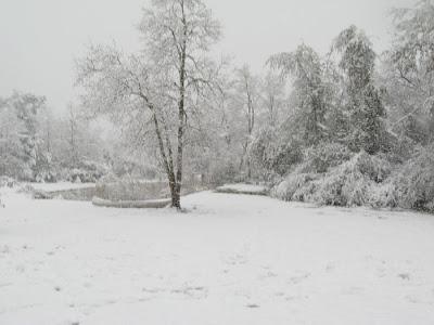 mike prangley 39 s weather blog thunder snow rattles baton. Black Bedroom Furniture Sets. Home Design Ideas