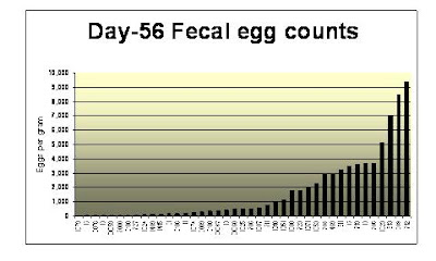 d-56 Fecal egg counts