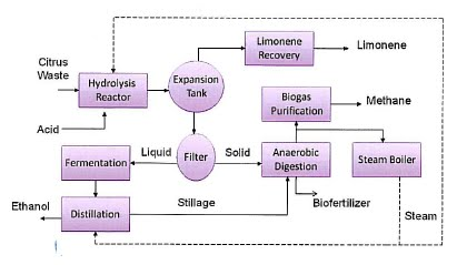 saccharification of pineapple peelings through dilute acid hydrolysis Published by elsevier ltd keywords: wheat straw fuel ethanol: dilute acid  pretreatment enzymatic sacciarification separate hydrolysis and fermentation.