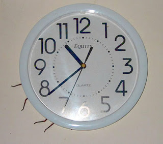 huntman spider behind clock