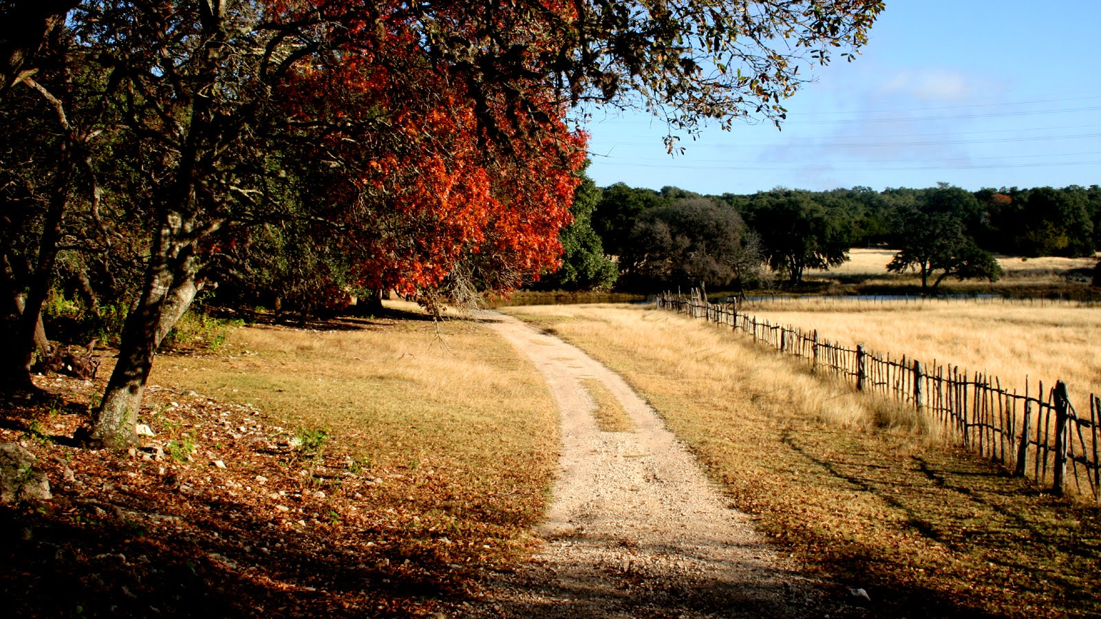 Film SA Fall in the Texas Hill Country
