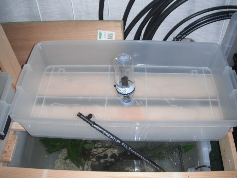 Aquaponics Grow Beds