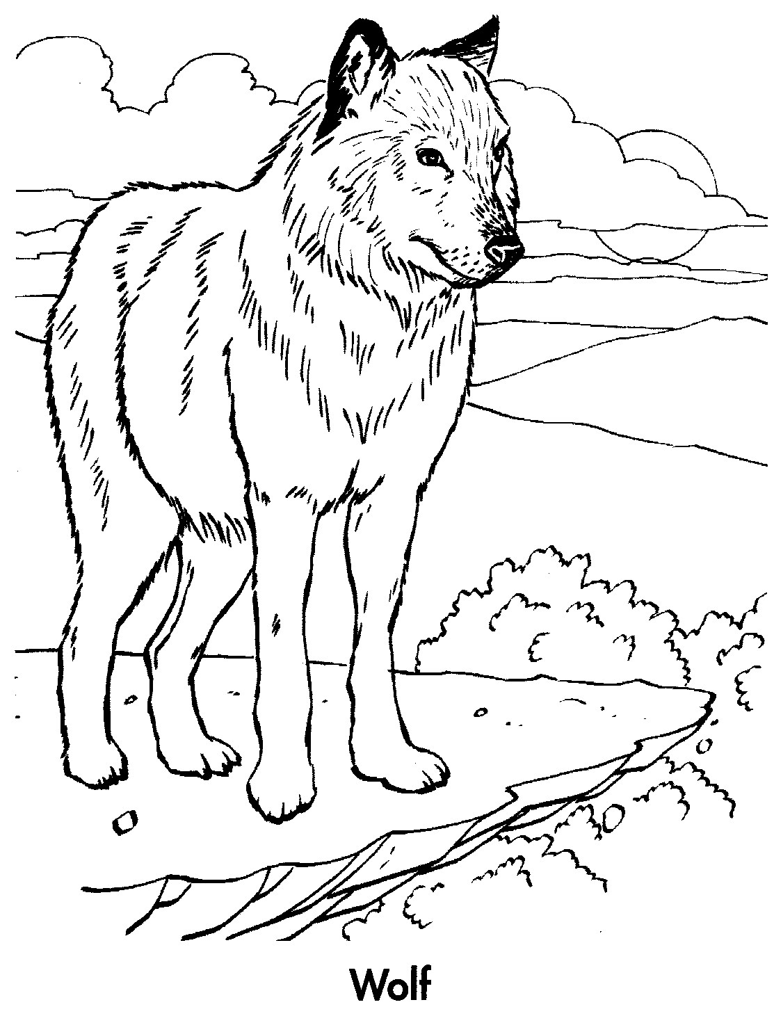 Planet earth coloring pages animals planet best free for Animal planet coloring pages