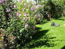 An English Garden by Bill Appleby