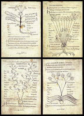 4 plant images from 10th cent. Pseudo-Apuleius herbal