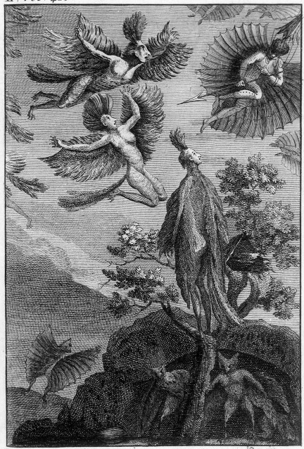 [Les+Hommes-oiseaus.jpg]