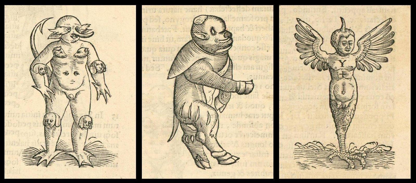 [Jacob+Rueff+-+De+conceptu+et+generatione+hominis+-+1554+(8).JPG]