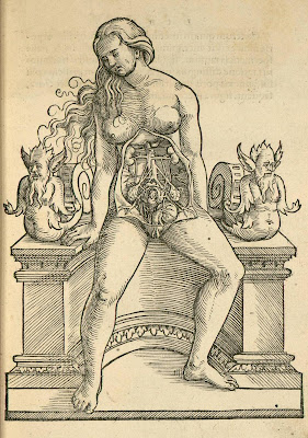 pregnant woman anatomical woodcut - Rueff 1554