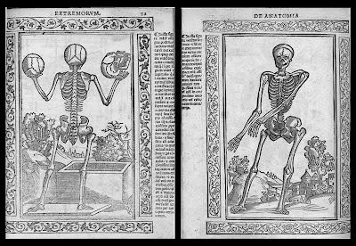 Berengario - anatomy
