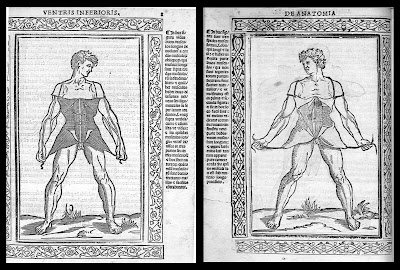 anatomical woodcuts by Berengario, 1523