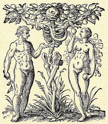 Adam and Eve Anatomy - Rueff