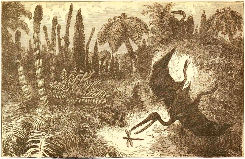 [Ideal+Landscape+of+the+Liassic+Period.jpg]