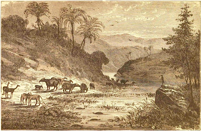 Landscape of the  Eocene Period