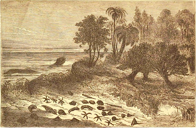 Landscape of the Cretaceous Period