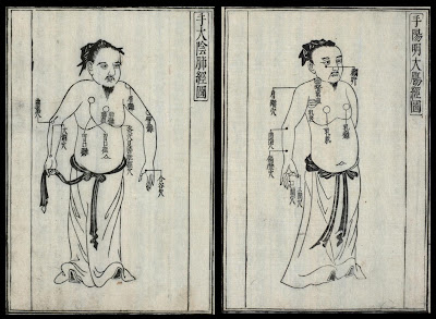 historic Japanese medicine - 2 frontal body views