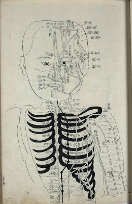 Japanese rare book acupuncture schematic