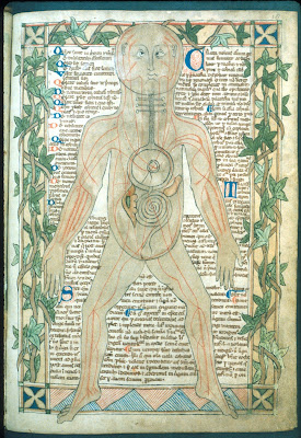 13th century medical miscellany