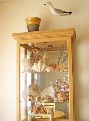 sea shell curio cabinet