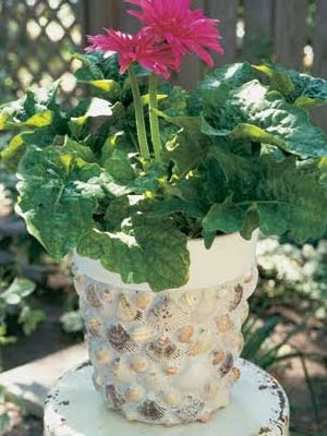 sea shell mosaic planter