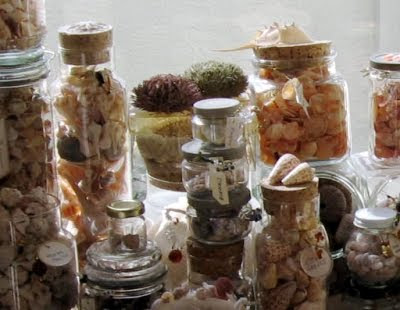 jars filled with seashells