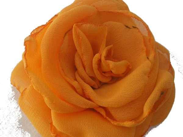 Rosa de gaza naranja.