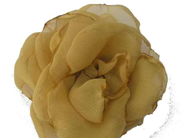 Rosa de gaza amarilla.