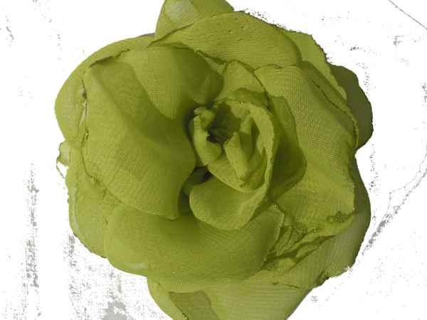 Rosa de gaza verde manzana.