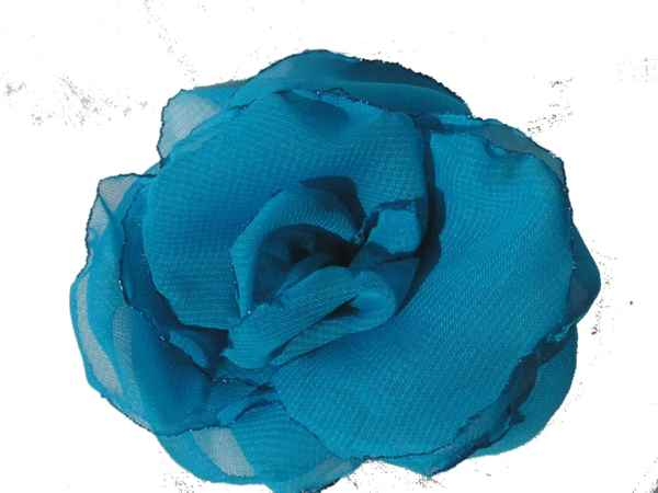 Rosa de gaza turqueza