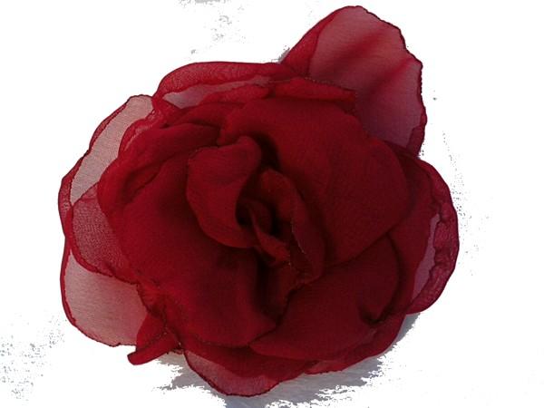Rosa de gaza Roja