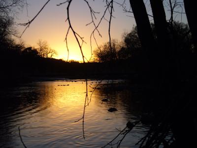 Barton Creek At Sunset